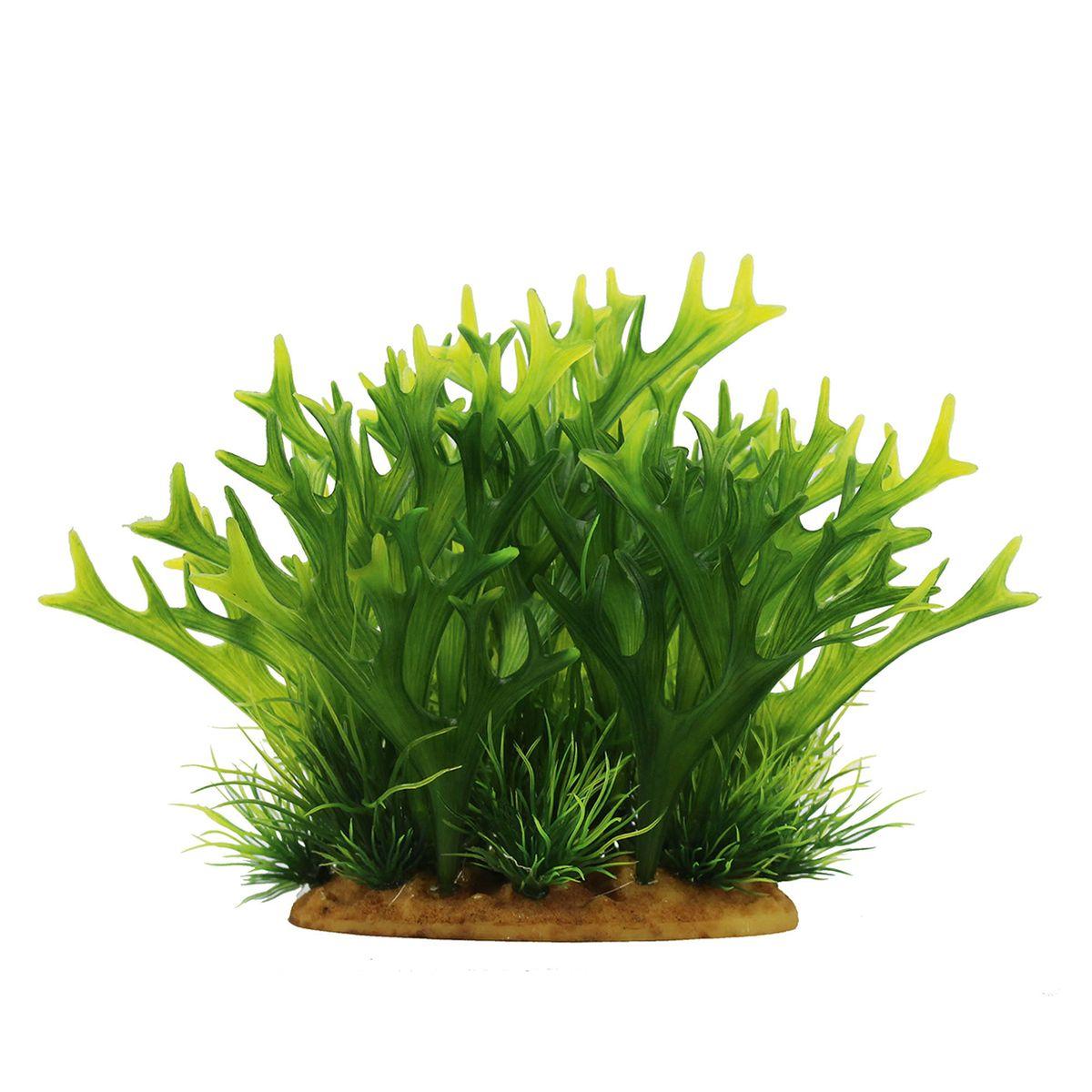 Растение для аквариума ArtUniq Платицериум, высота 15 смART-1160108Растение для аквариума ArtUniq Платицериум, высота 15 см