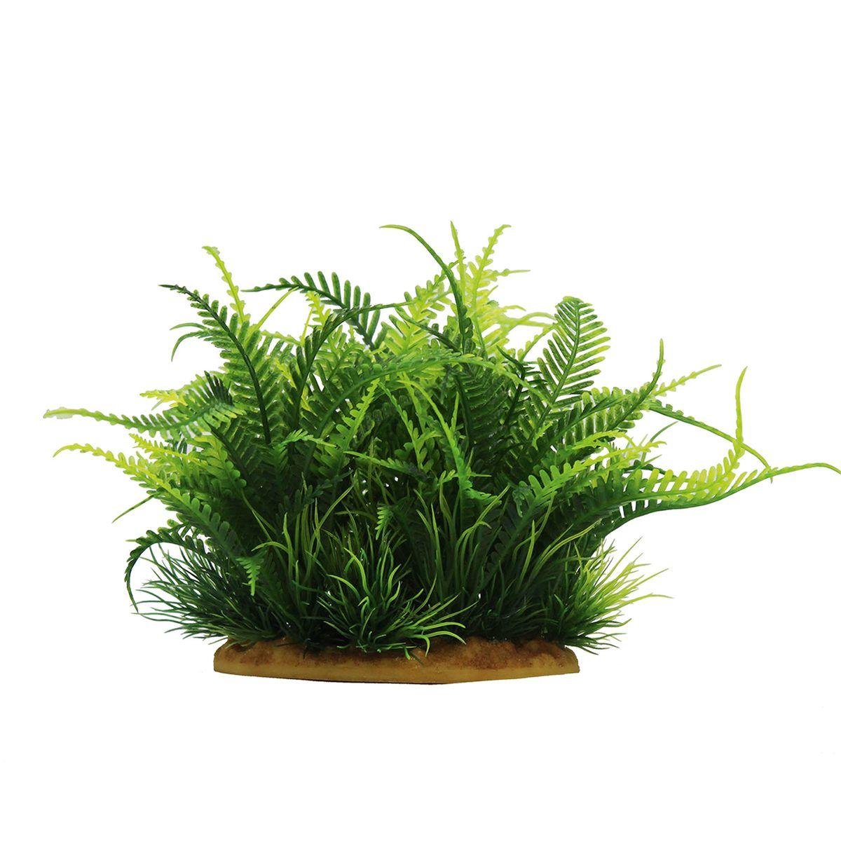 Растение для аквариума ArtUniq Папоротник, высота 15 смART-1160110Растение для аквариума ArtUniq Папоротник, высота 15 см