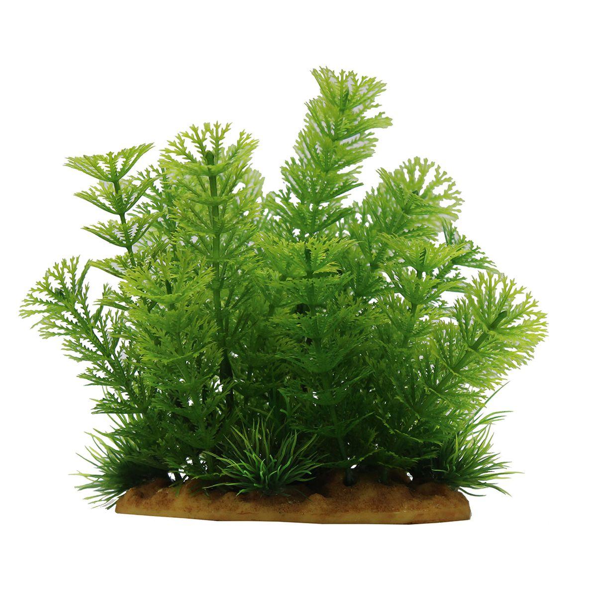 Растение для аквариума ArtUniq Кабомба, высота 15 смART-1160111Растение для аквариума ArtUniq Кабомба, высота 15 см