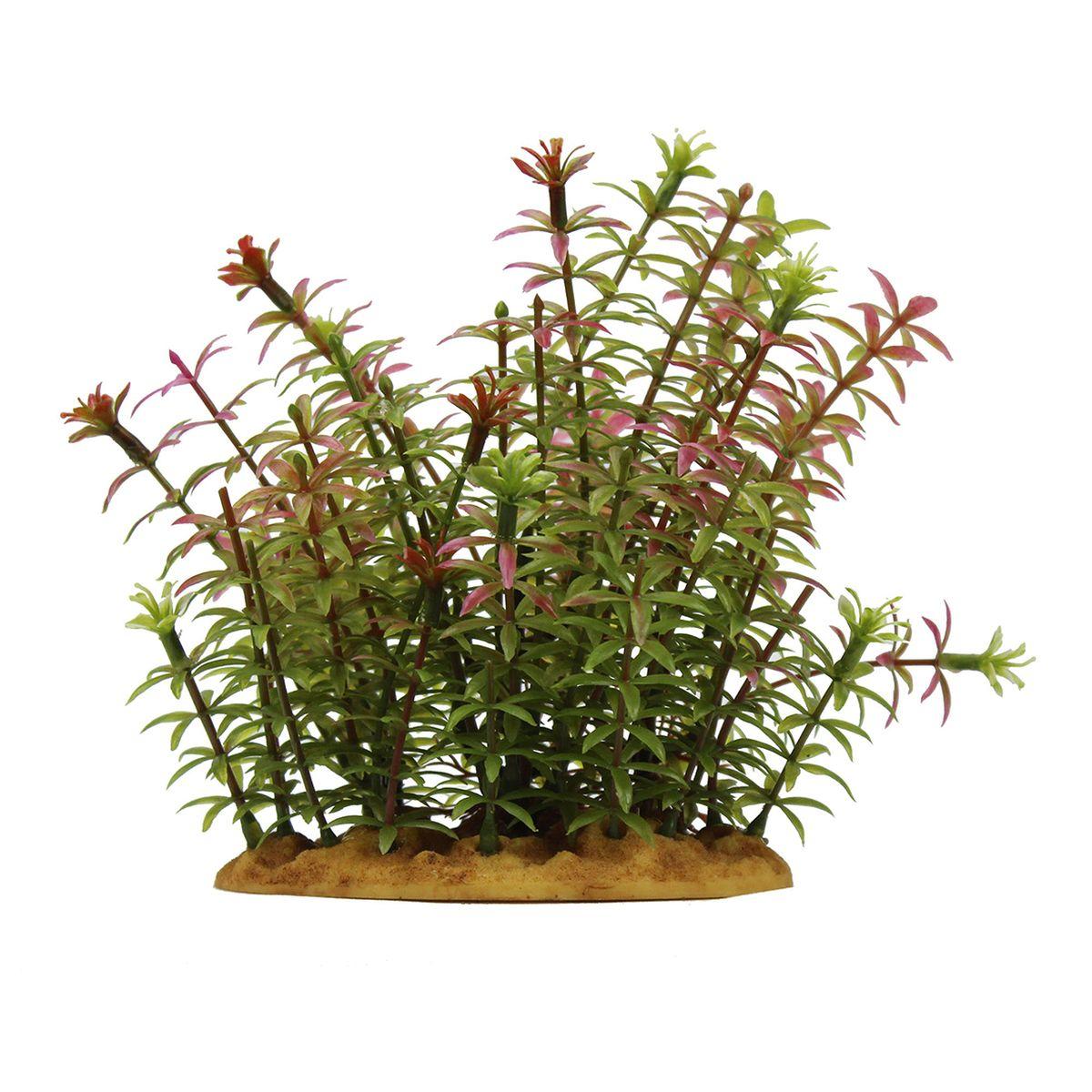 Растение для аквариума ArtUniq Ротала индийская, высота 15 смART-1160112Растение для аквариума ArtUniq Ротала индийская, высота 15 см