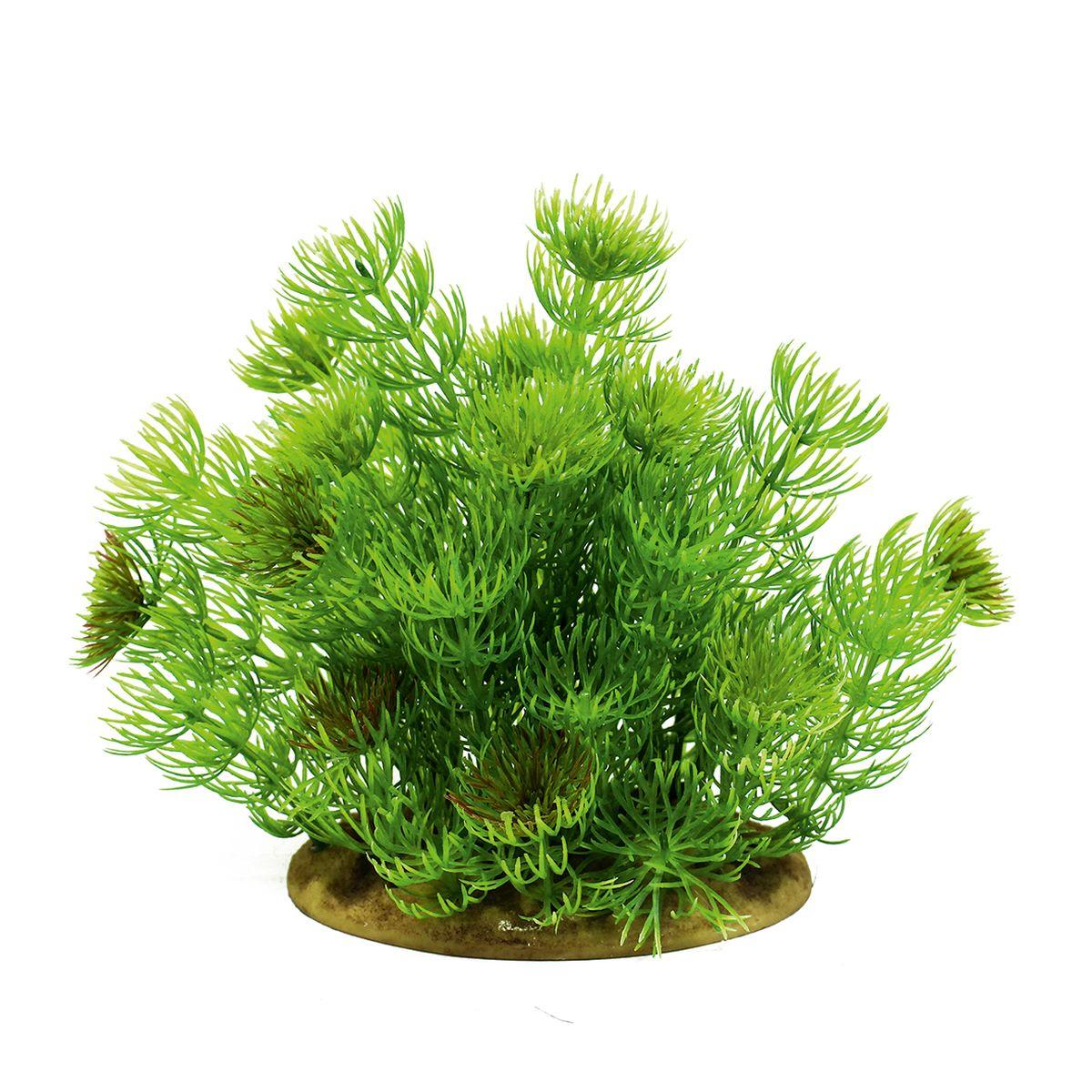 Растение для аквариума ArtUniq Лимнофила, высота 15 смART-1160113Растение для аквариума ArtUniq Лимнофила, высота 15 см