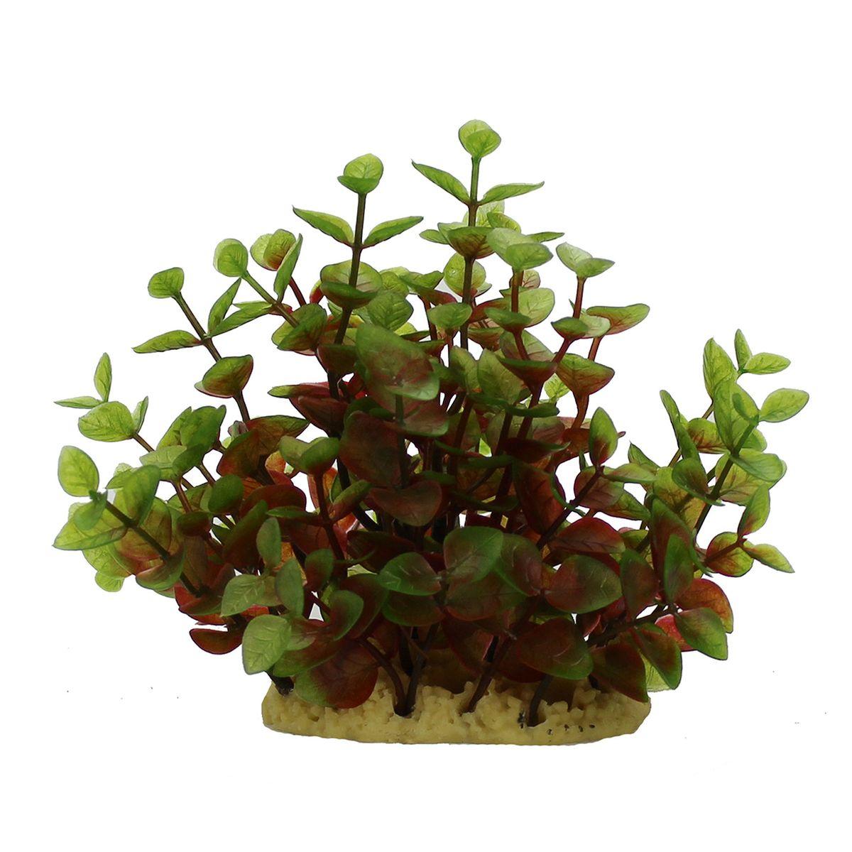 Растение для аквариума ArtUniq Людвигия красно-зеленая, высота 15 смART-1160114Растение для аквариума ArtUniq Людвигия красно-зеленая, высота 15 см