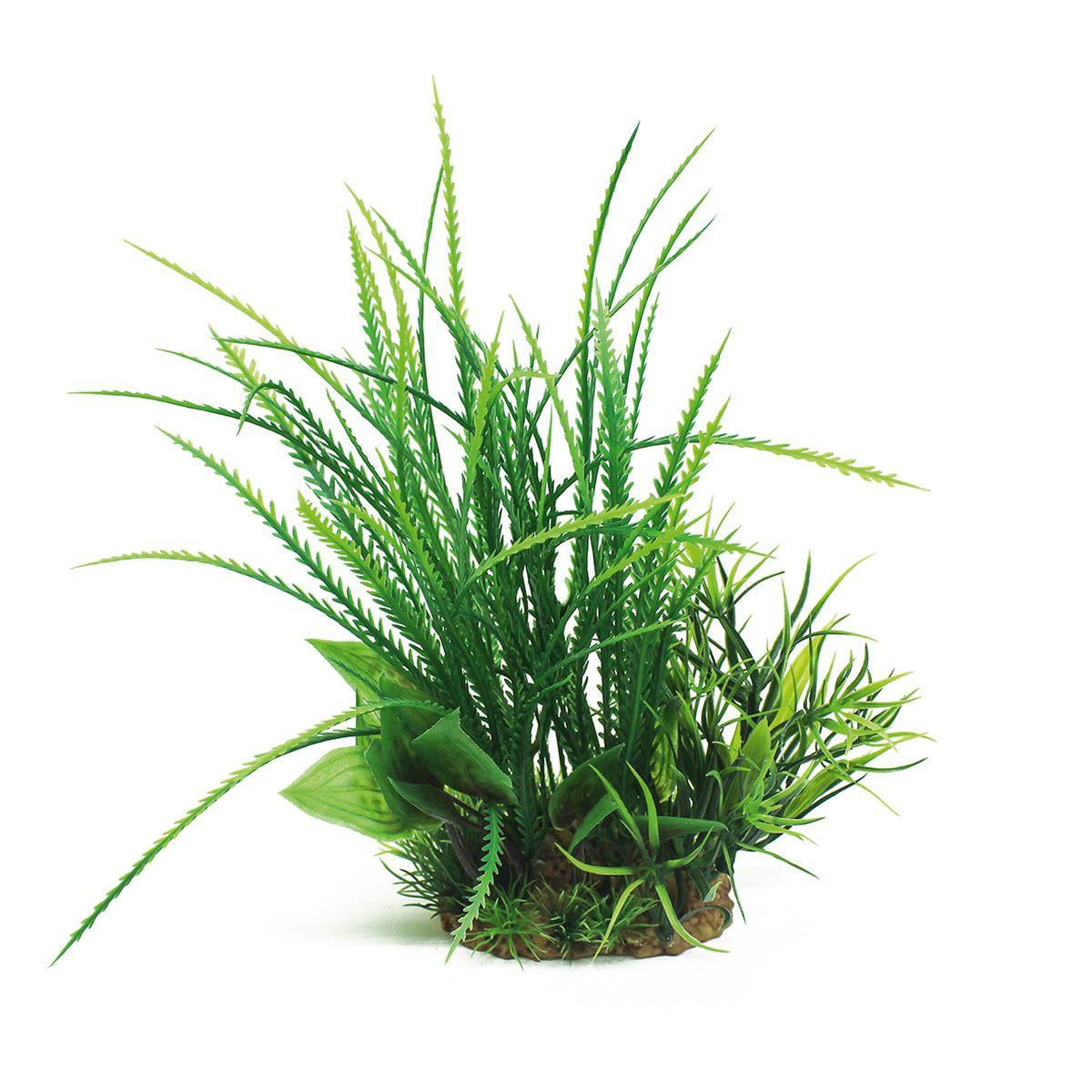 Растение для аквариума ArtUniq Гигрофила перистонадрезанная, высота 20 смART-1160205Растение для аквариума ArtUniq Гигрофила перистонадрезанная, высота 20 см