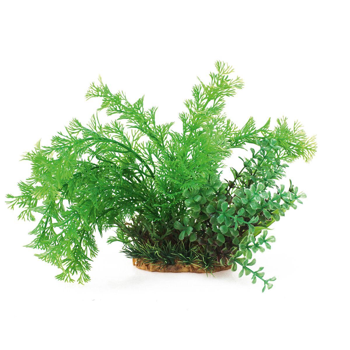 Растение для аквариума ArtUniq Кабомба, высота 20 смART-1160207Растение для аквариума ArtUniq Кабомба, высота 20 см