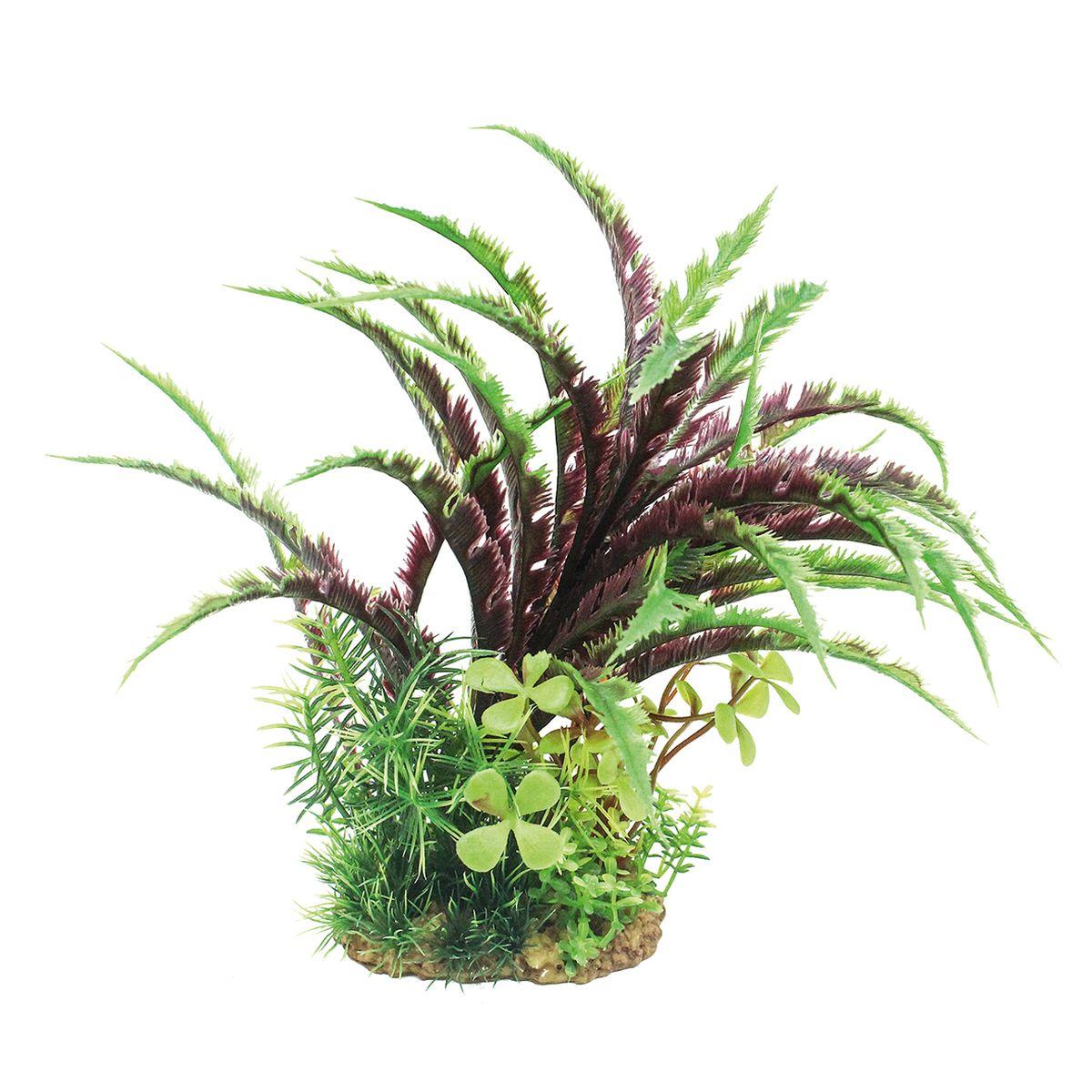 Растение для аквариума ArtUniq Дизиготека, высота 20 смART-1160208Растение для аквариума ArtUniq Дизиготека, высота 20 см