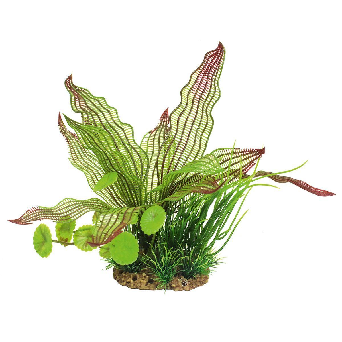 Растение для аквариума ArtUniq Апоногетон мадагаскарский, высота 20 смART-1160211Растение для аквариума ArtUniq Апоногетон мадагаскарский, высота 20 см