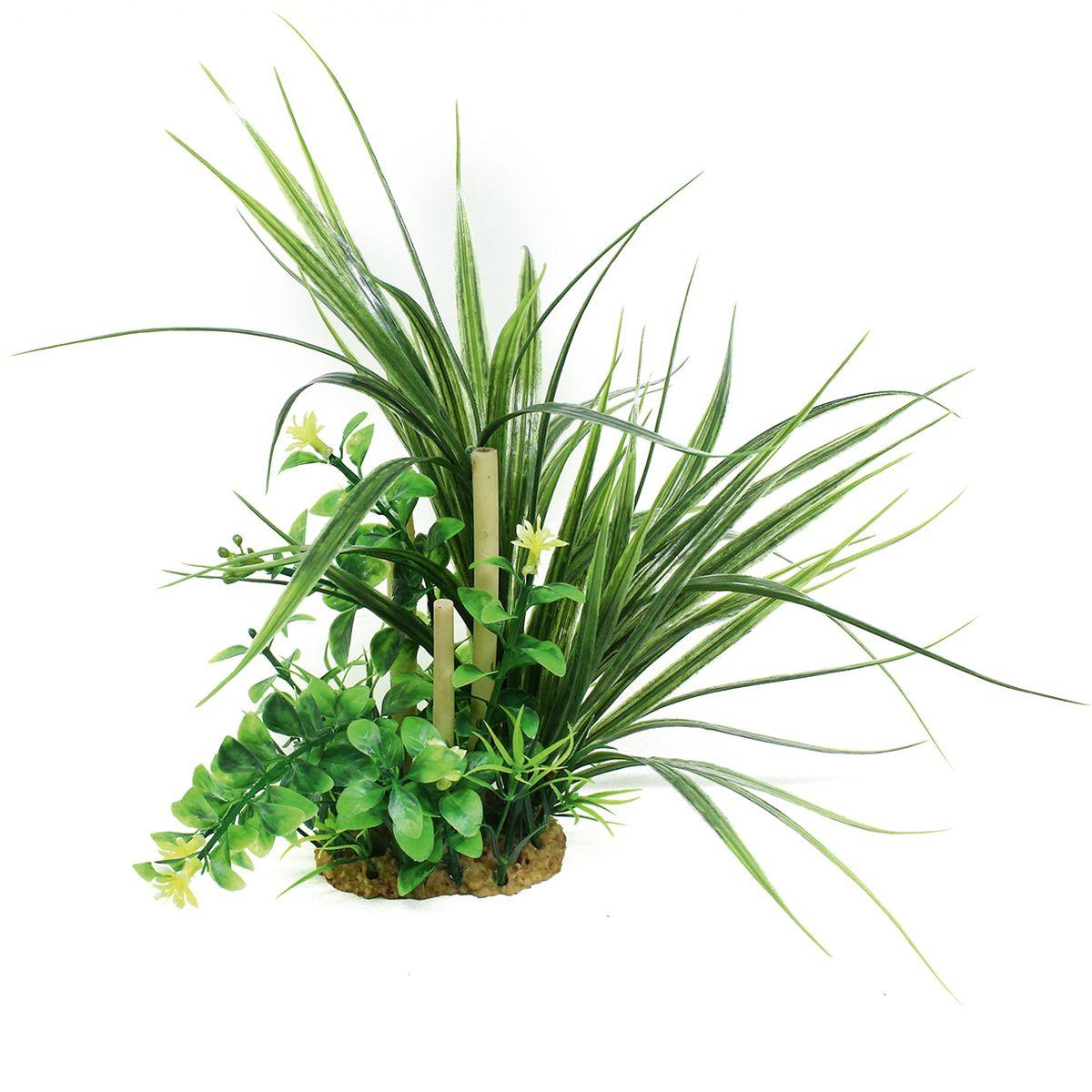 Композиция из растений для аквариума ArtUniq Офиопогон с бамбуком, высота 20 смART-1160509Композиция из растений для аквариума ArtUniq Офиопогон с бамбуком, высота 20 см