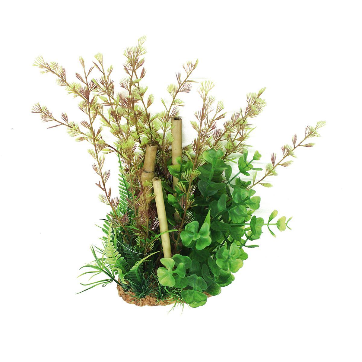 Композиция из растений для аквариума ArtUniq Кабомба с бамбуком, высота 20 смART-1160512Композиция из растений для аквариума ArtUniq Кабомба с бамбуком, высота 20 см