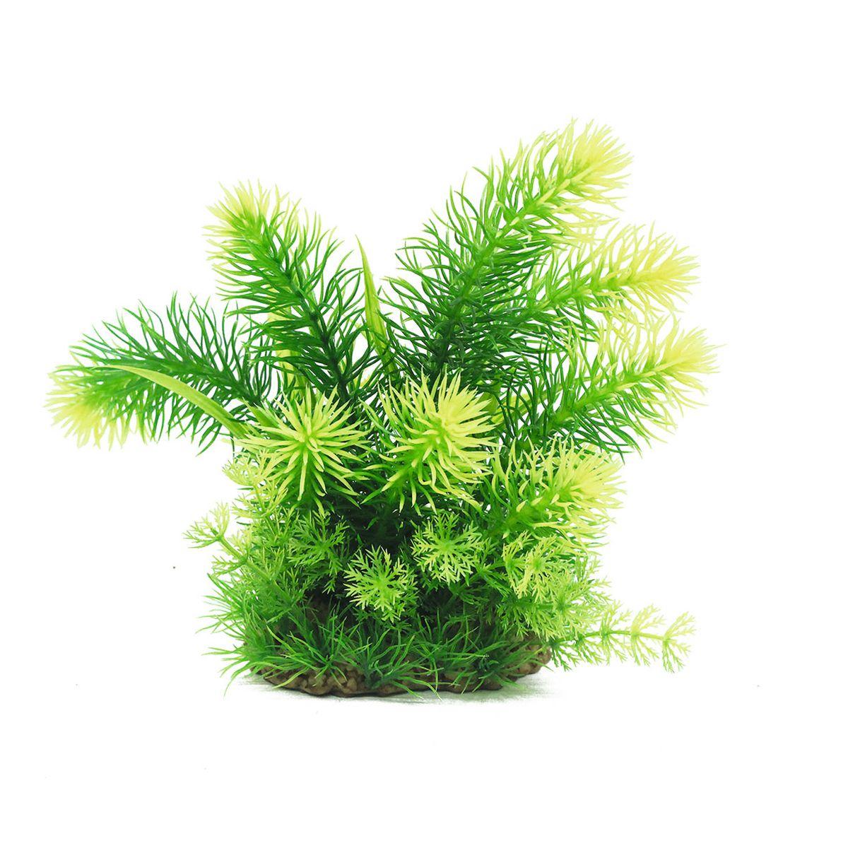 Растение для аквариума ArtUniq Погостемон эректус, высота 20 смART-1160513Растение для аквариума ArtUniq Погостемон эректус, высота 20 см