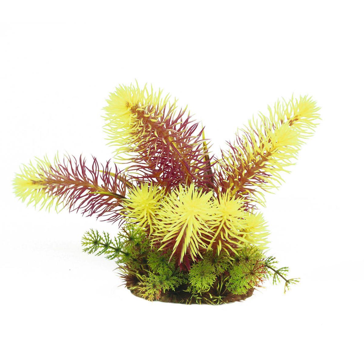 Растение для аквариума ArtUniq Погостемон Эректус красно-желтый, высота 20 смART-1160514Растение для аквариума ArtUniq Погостемон Эректус красно-желтый, высота 20 см