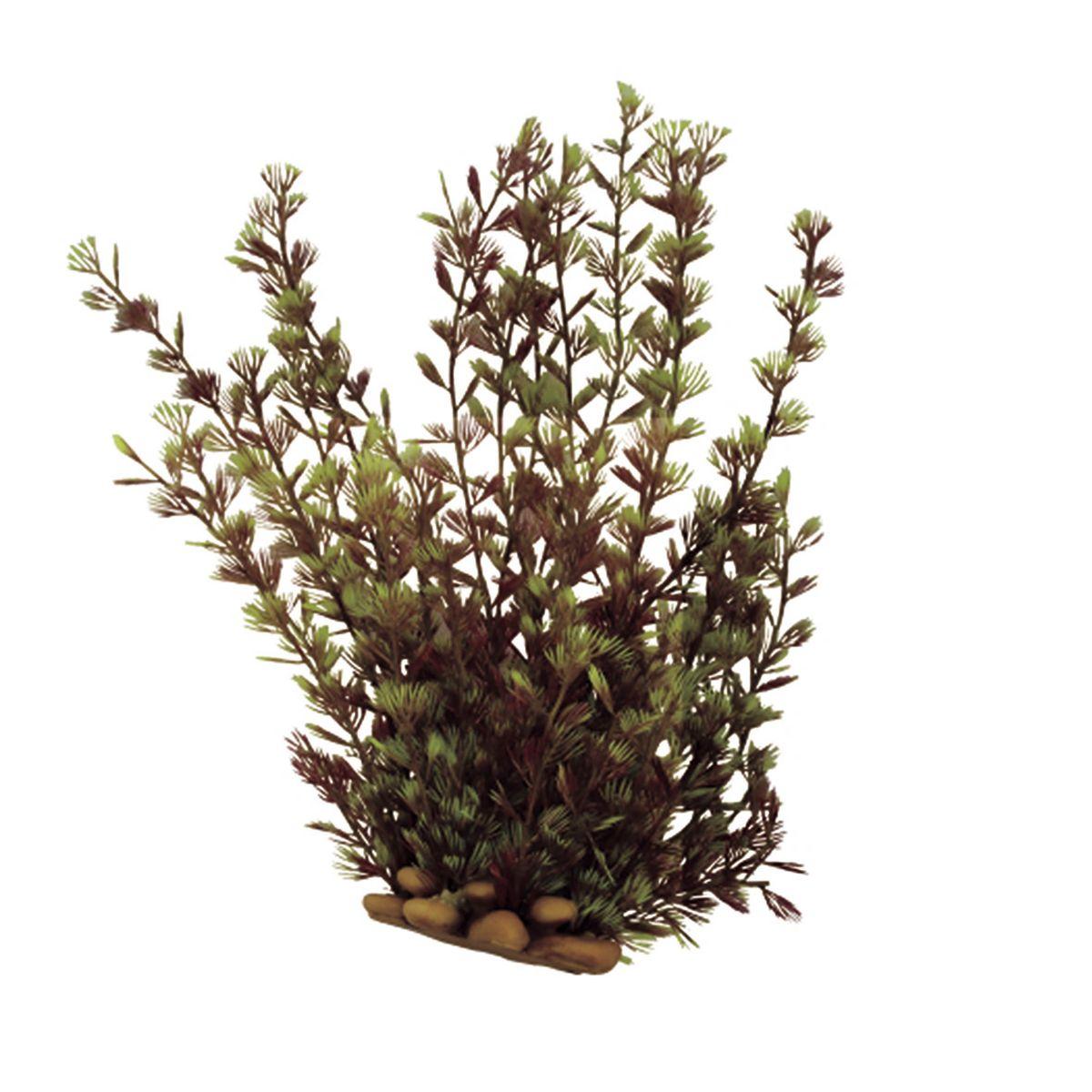 Растение для аквариума ArtUniq Кабомба, высота 20 смART-1160518Растение для аквариума ArtUniq Кабомба, высота 20 см
