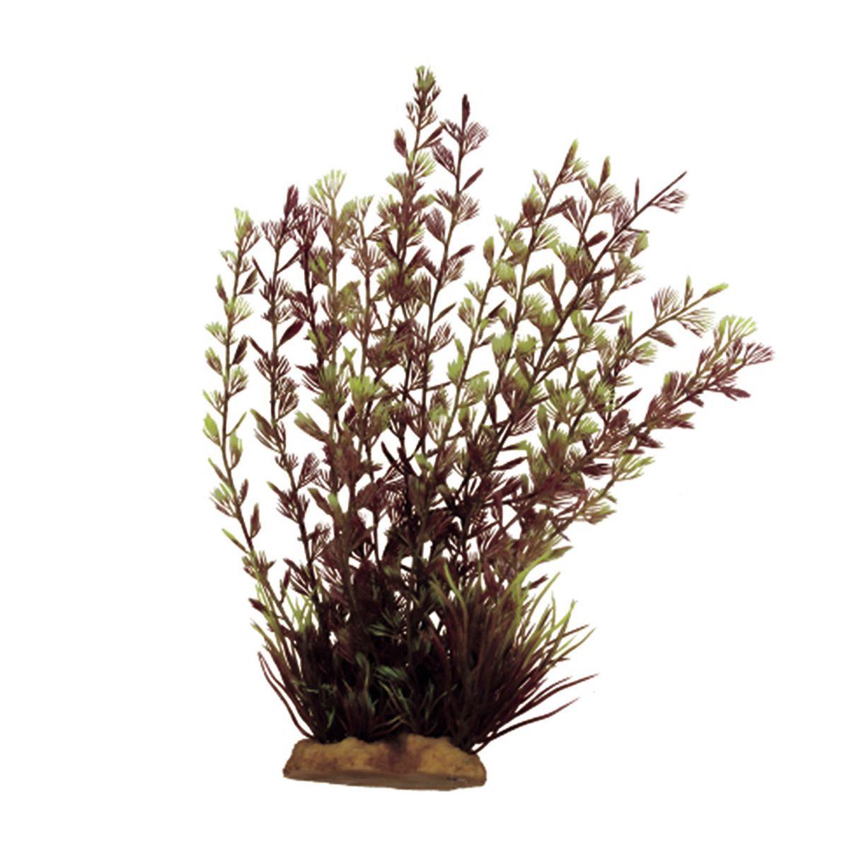 Растение для аквариума ArtUniq Кабомба вильчатая красная, высота 20 смART-1160519Растение для аквариума ArtUniq Кабомба вильчатая красная, высота 20 см
