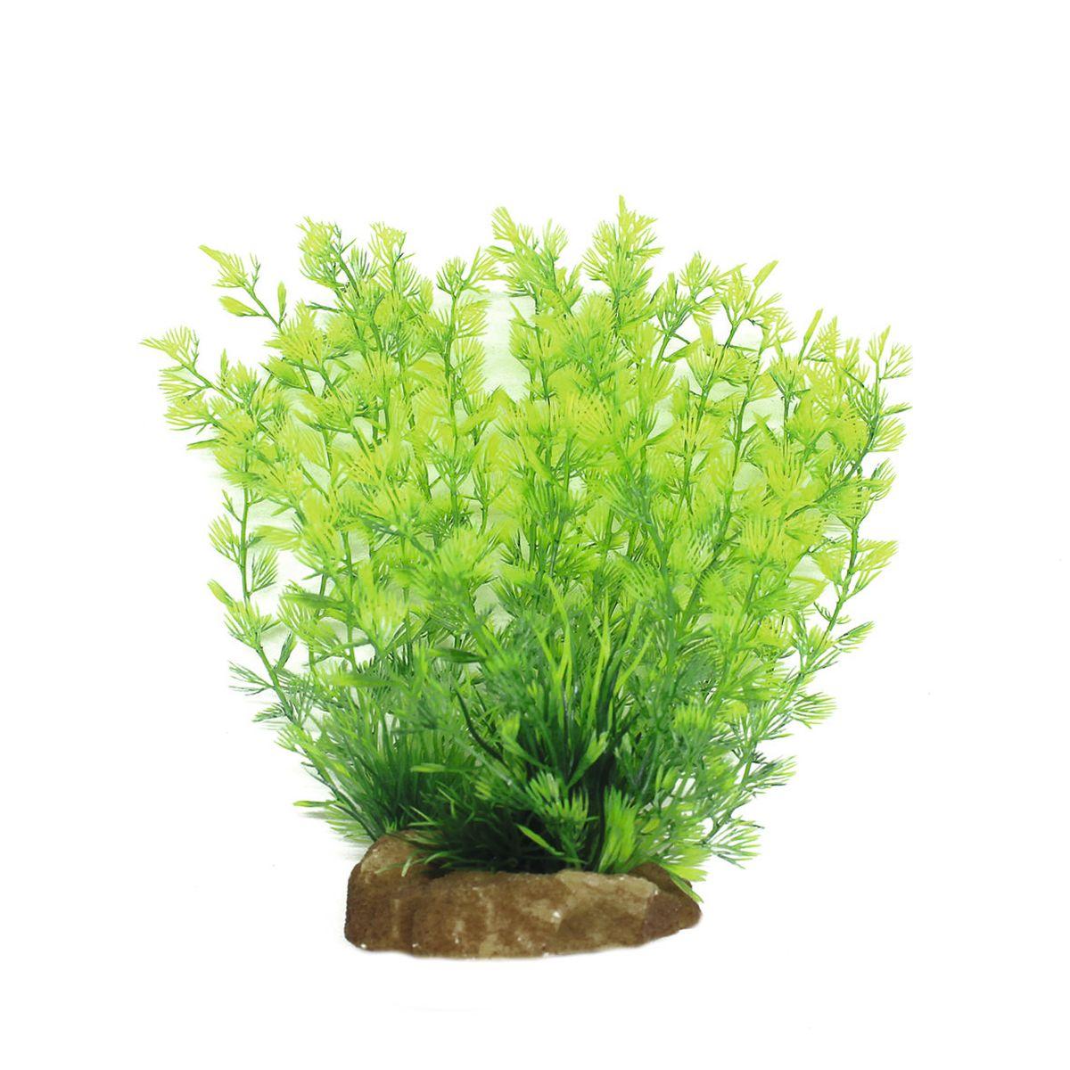 Растение для аквариума ArtUniq Кабомба, высота 20 смART-1160522Растение для аквариума ArtUniq Кабомба, высота 20 см