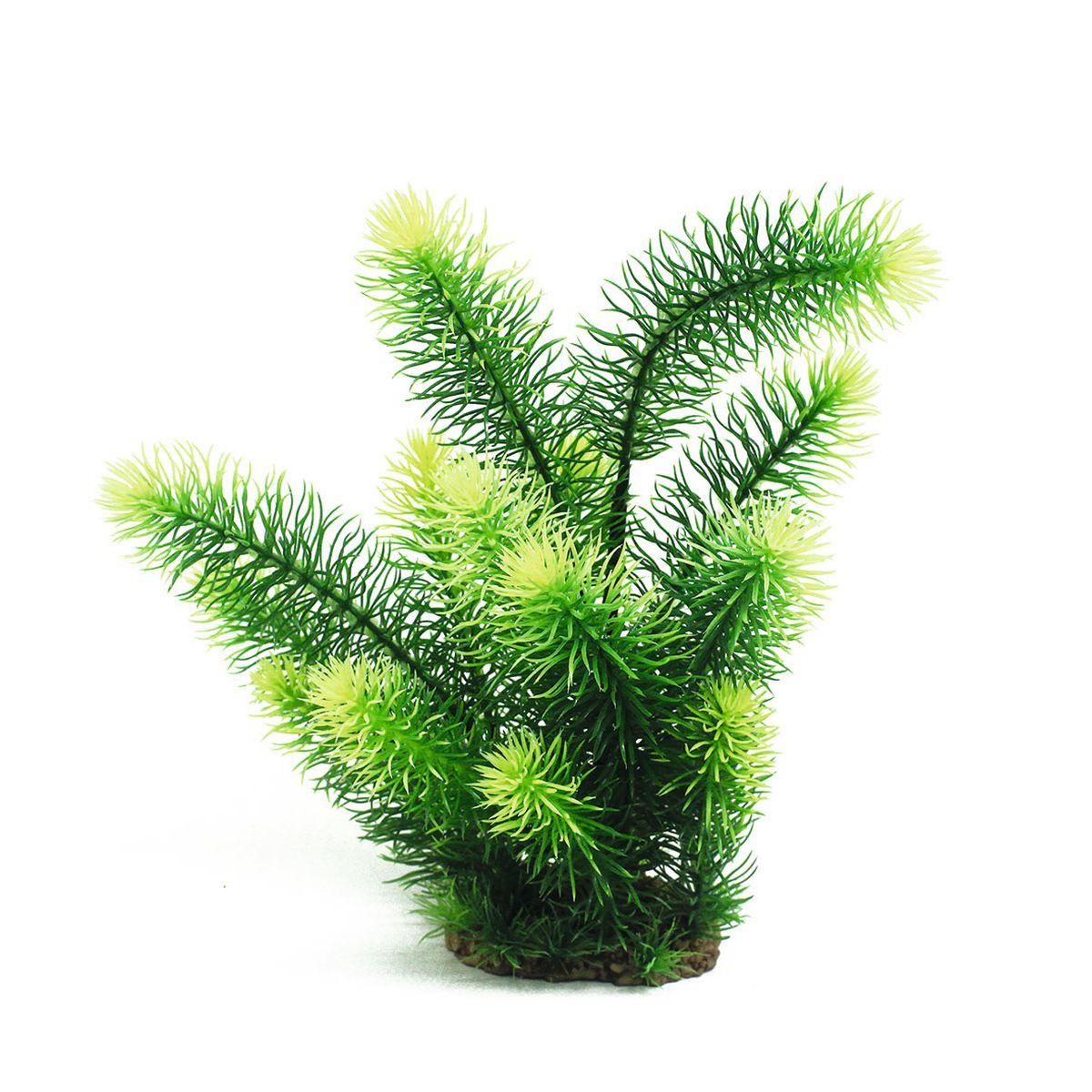 Растение для аквариума ArtUniq Погостемон эректус, высота 30 смART-1160571Растение для аквариума ArtUniq Погостемон эректус, высота 30 см