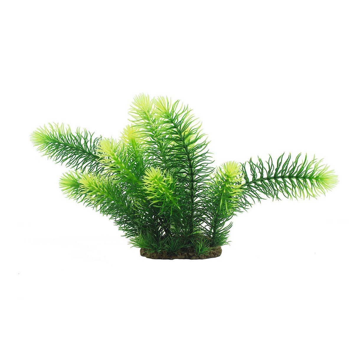 Растение для аквариума ArtUniq Погостемон эректус, высота 25 смART-1160572Растение для аквариума ArtUniq Погостемон эректус, высота 25 см