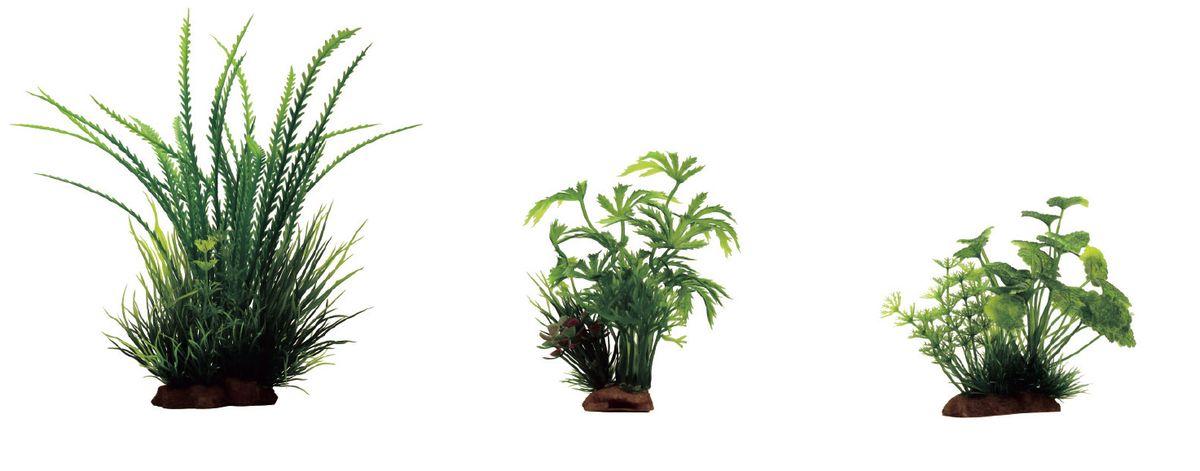 Растение для аквариума ArtUniq Гигрофила перистонадрезанная, абутилон, щитолистник, высота 10-20 см, 3 штART-1170102Растение для аквариума ArtUniq Гигрофила перистонадрезанная, абутилон, щитолистник, высота 10-20 см, 3 шт