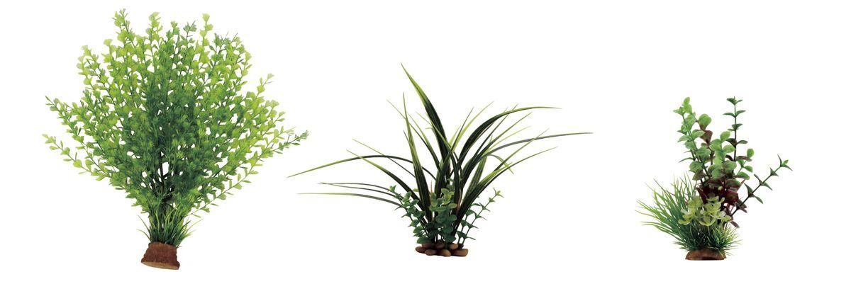 Растение для аквариума ArtUniq Кариота, акорус, лизимахия, высота 15-35 см, 3 штART-1170201Растение для аквариума ArtUniq Кариота, акорус, лизимахия, высота 15-35 см, 3 шт