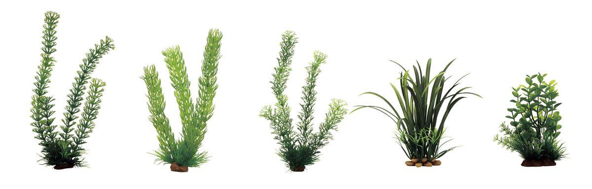 Растение для аквариума ArtUniq Амбулия, роголистник, перистолистник, офиопогон, бакопа, высота 15-35 см, 5 штART-1170203Растение для аквариума ArtUniq Амбулия, роголистник, перистолистник, офиопогон, бакопа, высота 15-35 см, 5 шт