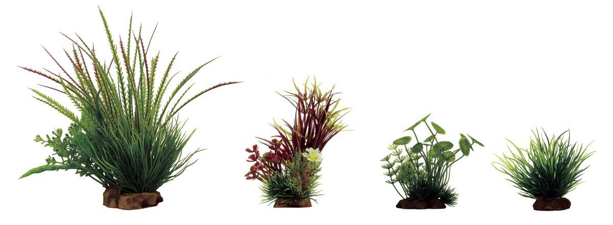 Растение для аквариума ArtUniq Гигрофила перистонадрезанная, лагаросифон мадагаскарский красный, щитолистник, лилеопсис, высота 8-23 см, 4 штART-1170302Растение для аквариума ArtUniq Гигрофила перистонадрезанная, лагаросифон мадагаскарский красный, щитолистник, лилеопсис, высота 8-23 см, 4 шт