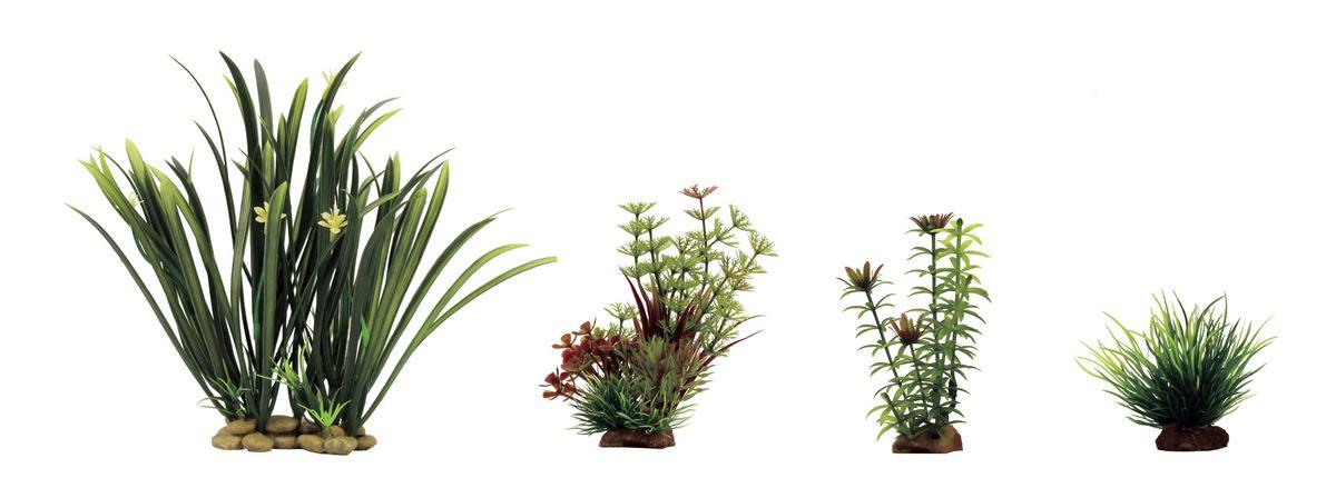 Растение для аквариума ArtUniq Офиопогон, амбулия, элодея, лилеопсис, высота 8-23 см, 4 штART-1170304Растение для аквариума ArtUniq Офиопогон, амбулия, элодея, лилеопсис, высота 8-23 см, 4 шт