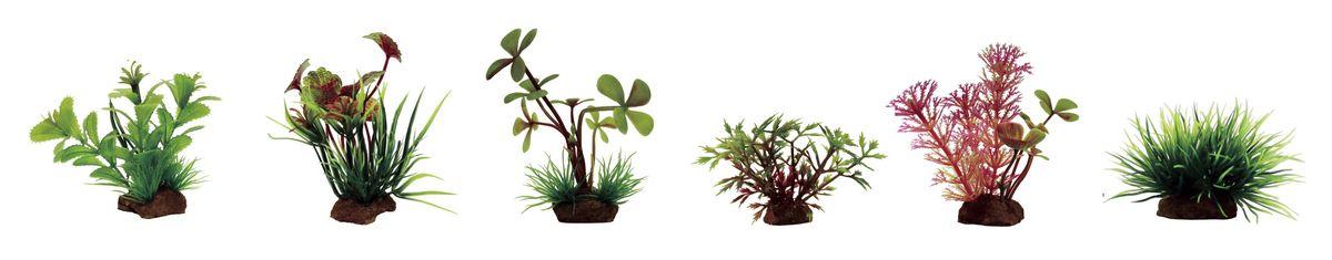 Растение для аквариума ArtUniq Прозерпинака, щитолистник, марсилия, гигрофила синнема, кабомба красная, лилеопсис, высота 7-10 см, 4 штART-1170401Растение для аквариума ArtUniq Прозерпинака, щитолистник, марсилия, гигрофила синнема, кабомба красная, лилеопсис, высота 7-10 см, 4 шт