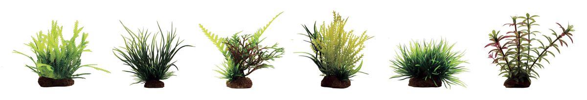 Растение для аквариума ArtUniq Мох, ситняг, папоротник, майяка, лилеопсис, элодея, высота 7-10 см, 6 штART-1170403Растение для аквариума ArtUniq Мох, ситняг, папоротник, майяка, лилеопсис, элодея, высота 7-10 см, 6 шт