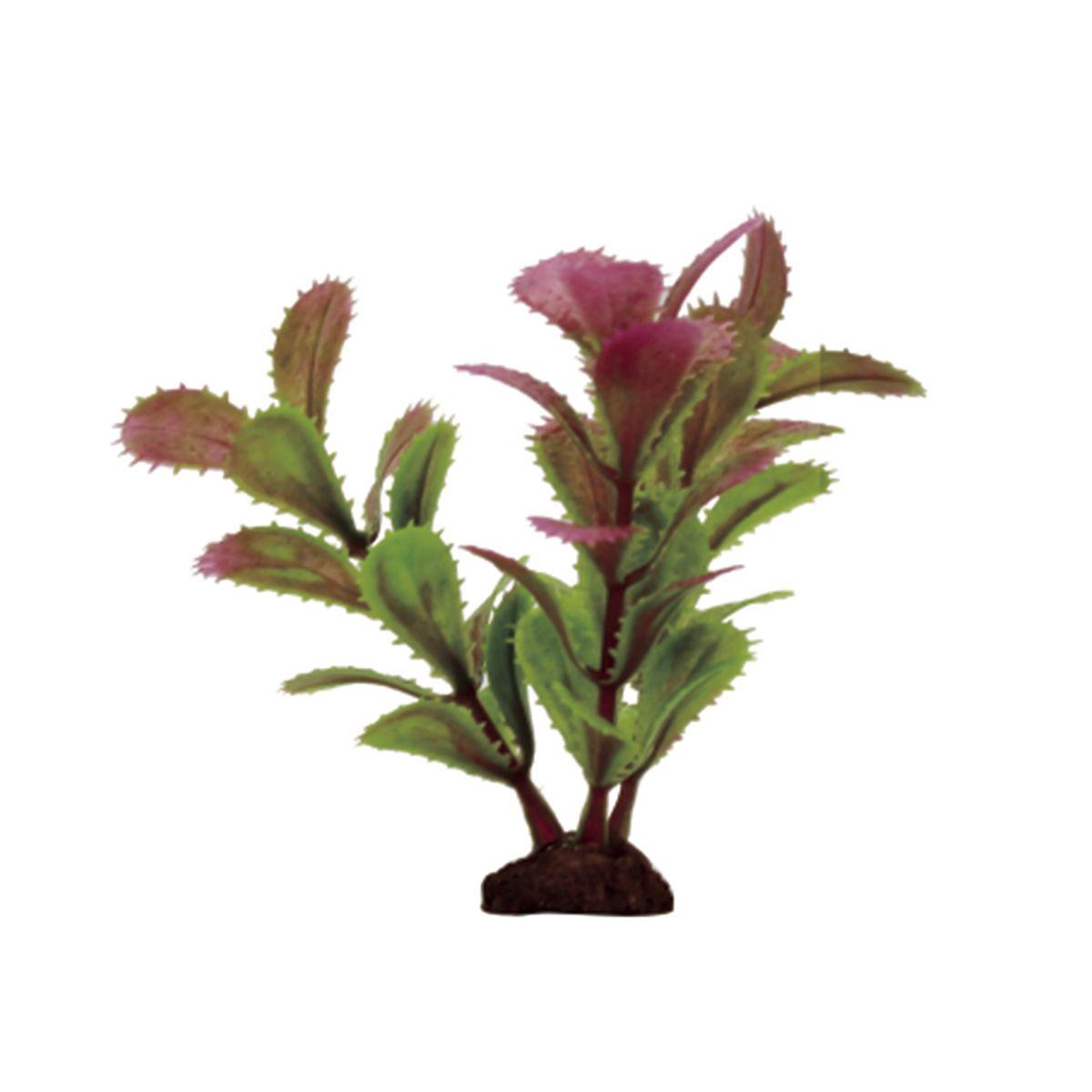 Растение для аквариума ArtUniq Прозерпинака красно-зеленая, высота 10 см, 6 штART-1170501Растение для аквариума ArtUniq Прозерпинака красно-зеленая, высота 10 см, 6 шт