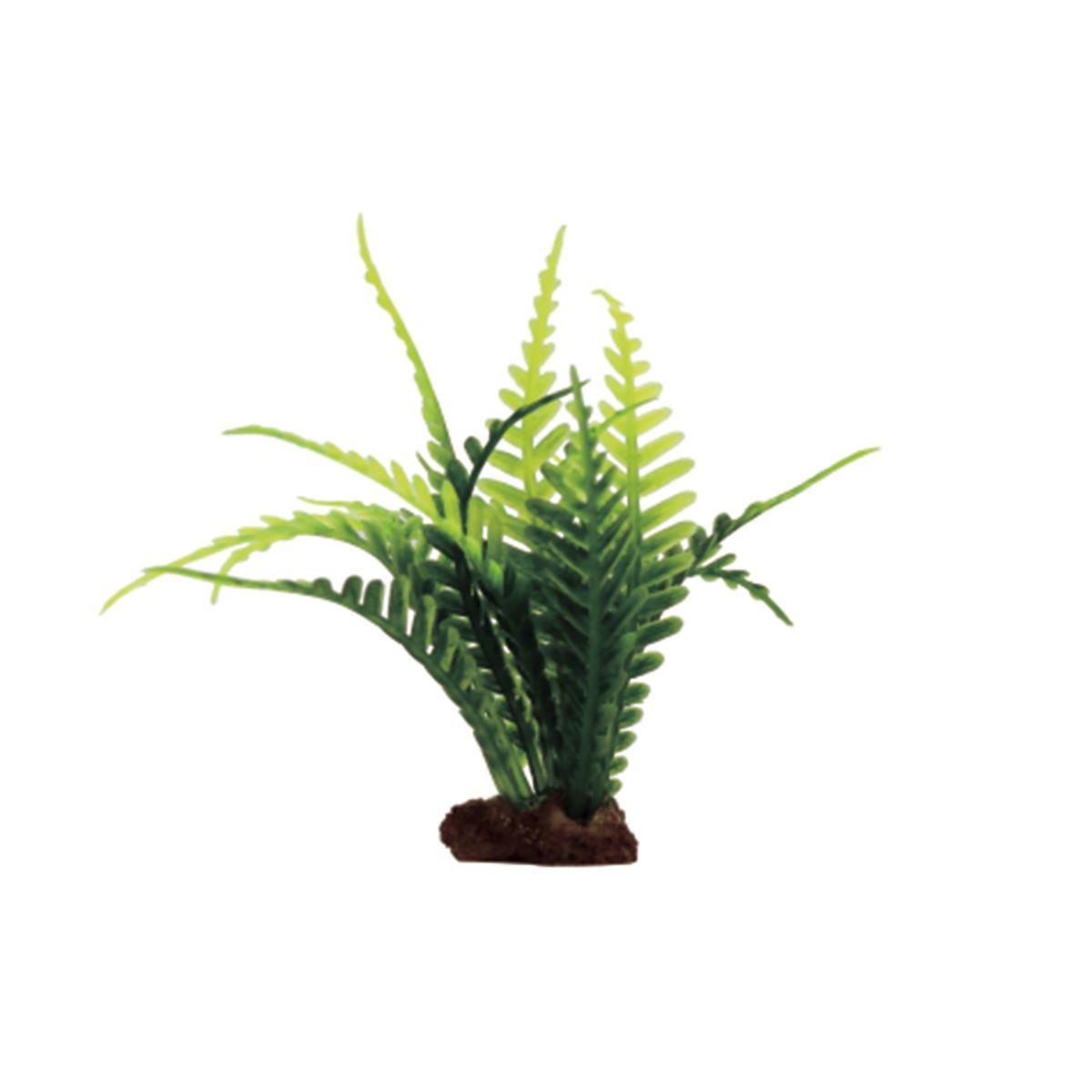 Растение для аквариума ArtUniq Папоротник, высота 10 см, 6 штART-1170505Растение для аквариума ArtUniq Папоротник, высота 10 см, 6 шт