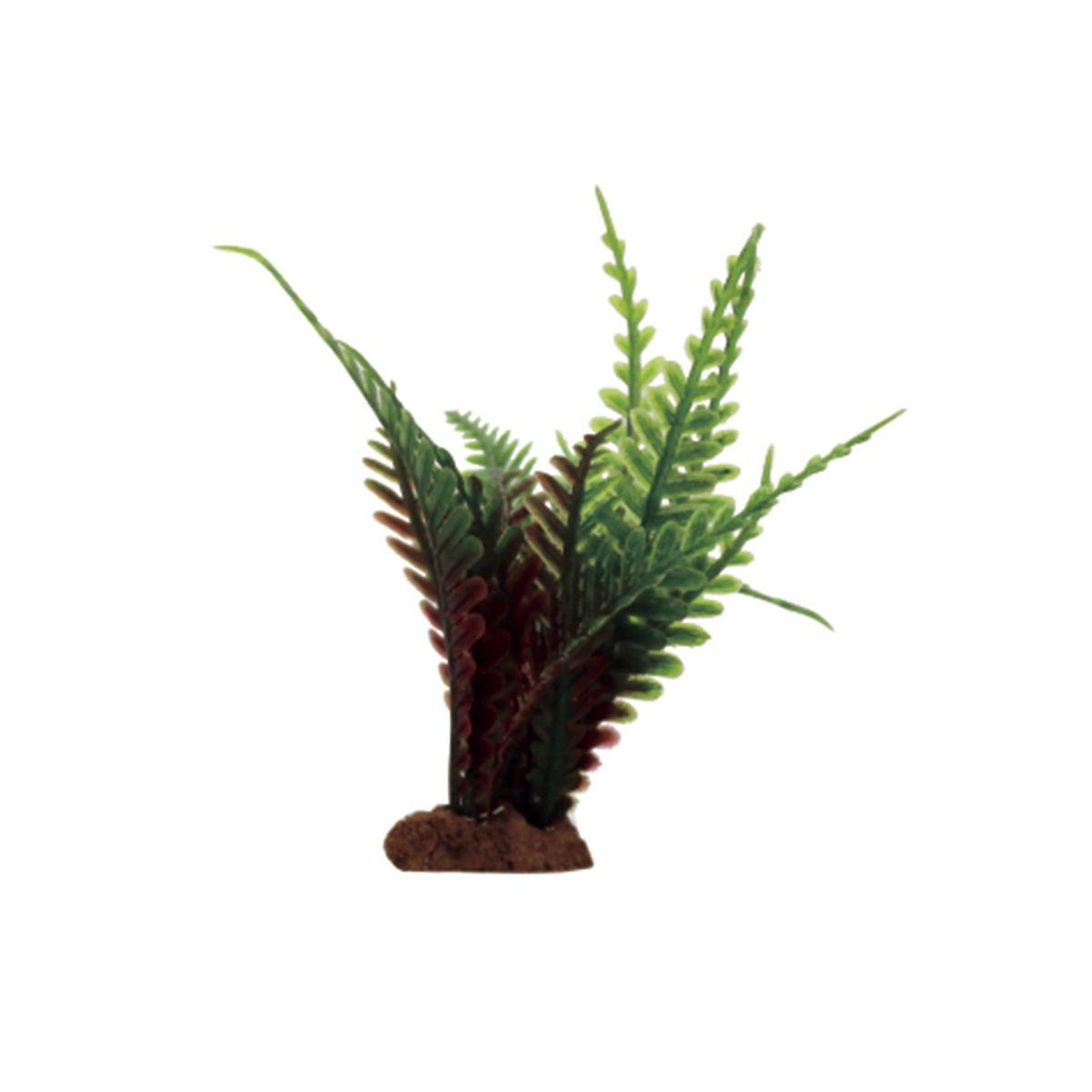 Растение для аквариума ArtUniq Папоротник красно-зеленый, высота 10 см, 6 штART-1170506Растение для аквариума ArtUniq Папоротник красно-зеленый, высота 10 см, 6 шт