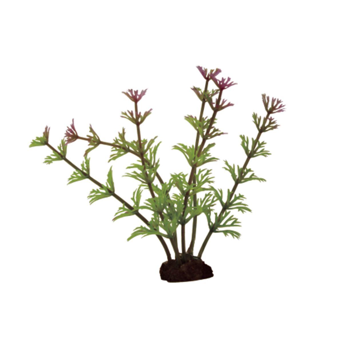 Растение для аквариума ArtUniq Кабомба красно-зеленая, высота 10 см, 6 штART-1170508Растение для аквариума ArtUniq Кабомба красно-зеленая, высота 10 см, 6 шт