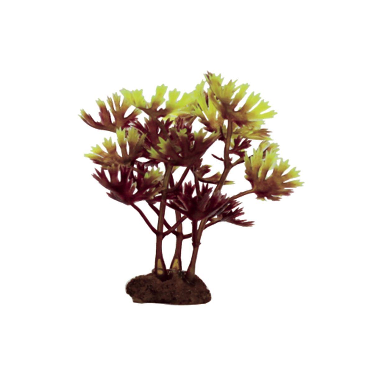 Растение для аквариума ArtUniq Лютик водный красно-зеленый, высота 10 см, 6 штART-1170511Растение для аквариума ArtUniq Лютик водный красно-зеленый, высота 10 см, 6 шт
