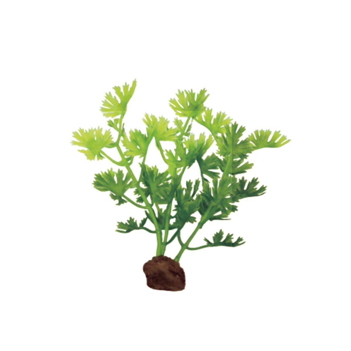 Растение для аквариума ArtUniq Лютик водный, высота 10 см, 6 штART-1170512Растение для аквариума ArtUniq Лютик водный, высота 10 см, 6 шт