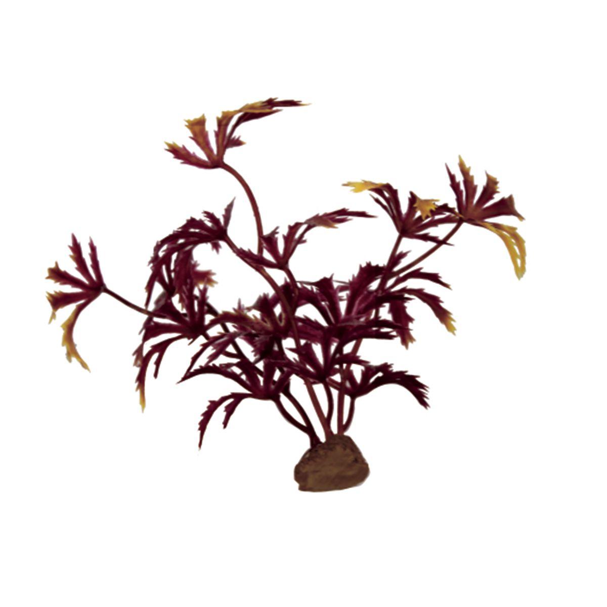 Растение для аквариума ArtUniq Абутилон красный, высота 10 см, 6 штART-1170513Растение для аквариума ArtUniq Абутилон красный, высота 10 см, 6 шт