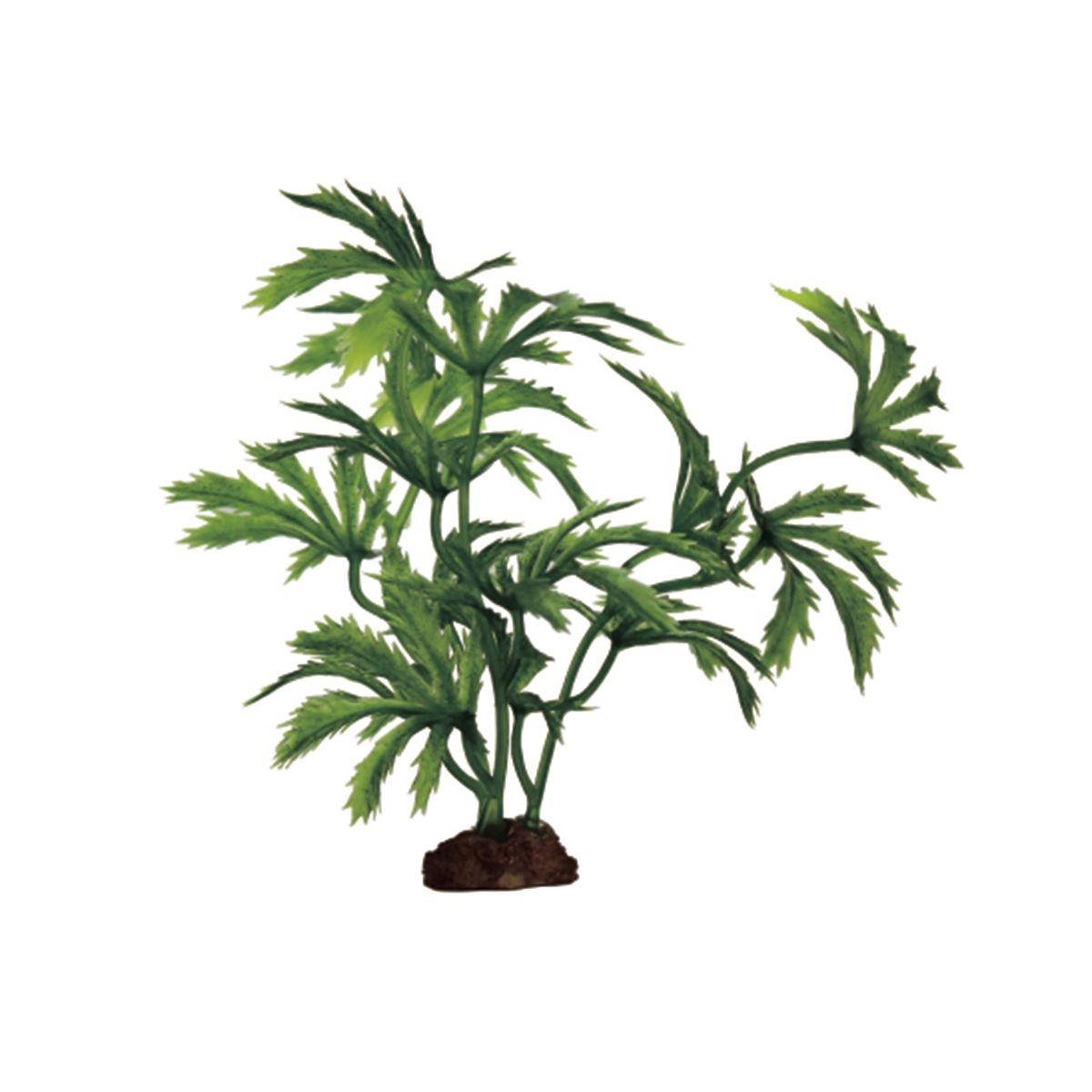 Растение для аквариума ArtUniq Абутилон, высота 10 см, 6 штART-1170514Растение для аквариума ArtUniq Абутилон, высота 10 см, 6 шт