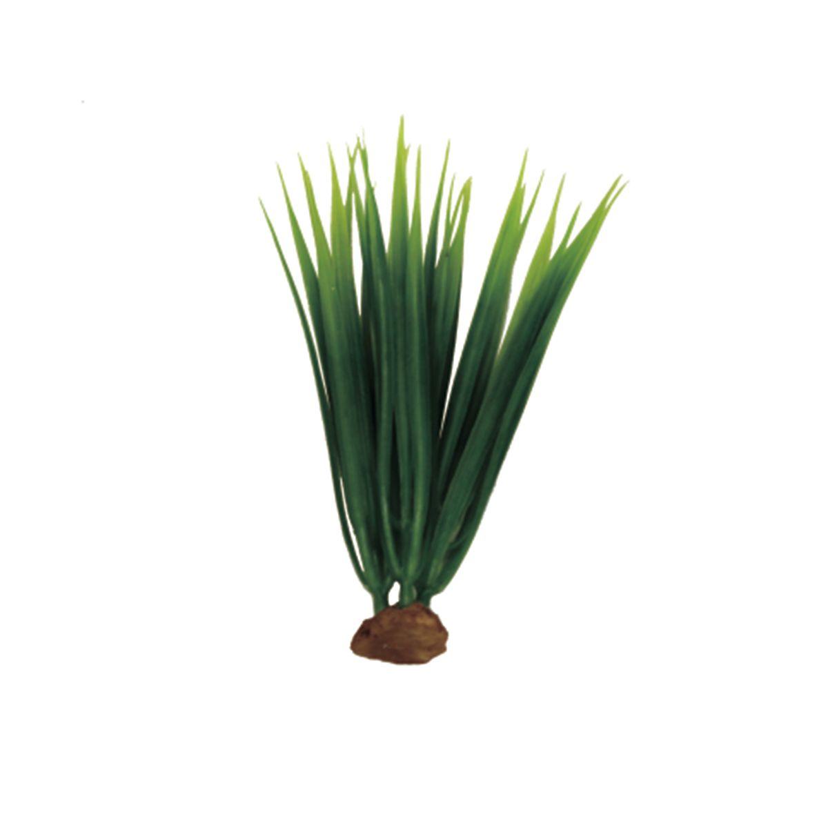 Растение для аквариума ArtUniq Акорус, высота 15 см, 5 штART-1170519Растение для аквариума ArtUniq Акорус, высота 15 см, 5 шт