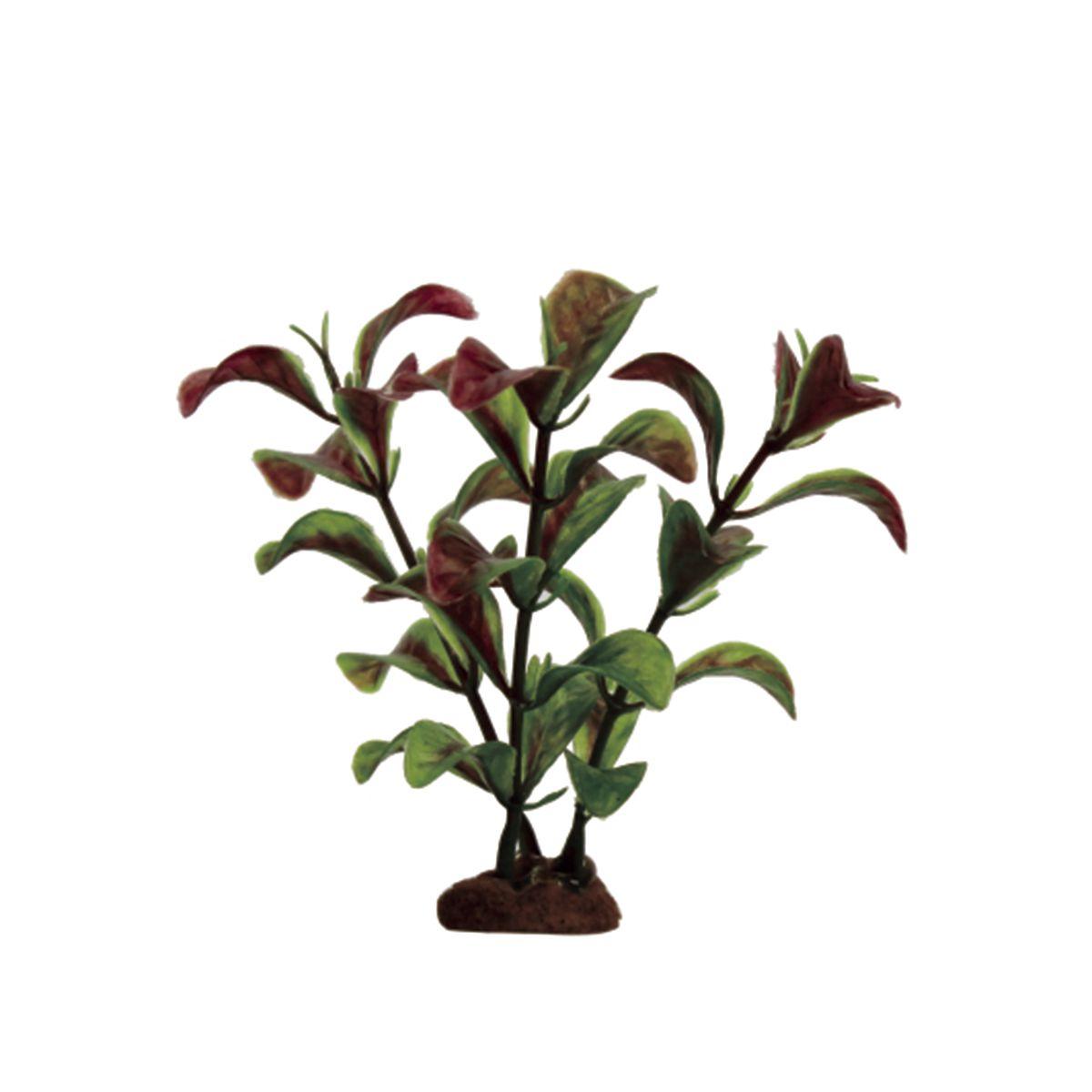 Растение для аквариума ArtUniq Людвигия красно-зеленая, высота 10 см, 6 штART-1170522Растение для аквариума ArtUniq Людвигия красно-зеленая, высота 10 см, 6 шт