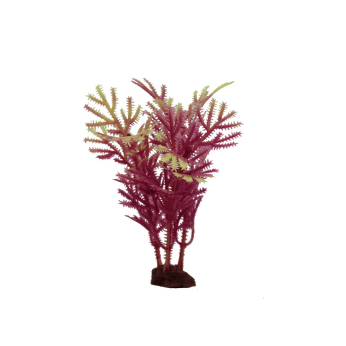 Растение для аквариума ArtUniq Хоттиния красно-желтая, высота 10 см, 6 штART-1170523Растение для аквариума ArtUniq Хоттиния красно-желтая, высота 10 см, 6 шт