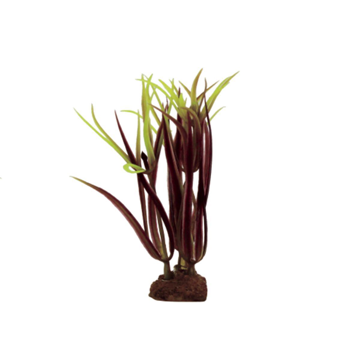Растение для аквариума ArtUniq Лагаросифон мадагаскарский красный, высота 10 см, 6 штART-1170526Растение для аквариума ArtUniq Лагаросифон мадагаскарский красный, высота 10 см, 6 шт