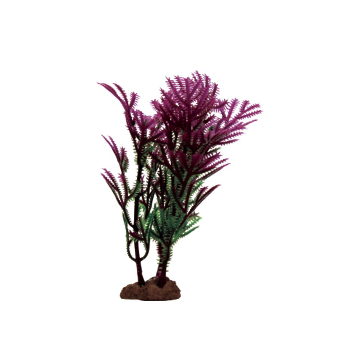 Растение для аквариума ArtUniq Хоттиния фиолетовая, высота 10 см, 6 штART-1170529Растение для аквариума ArtUniq Хоттиния фиолетовая, высота 10 см, 6 шт