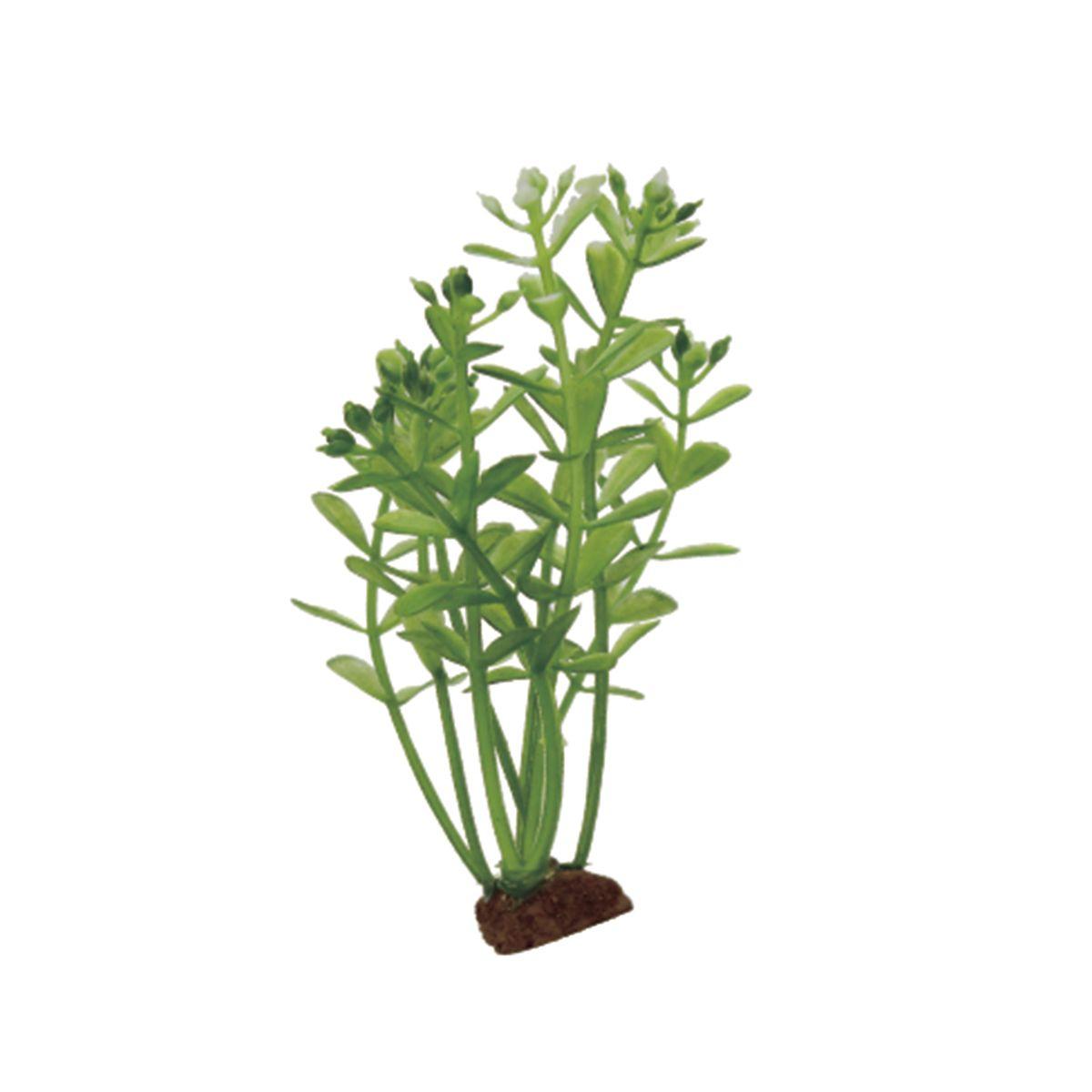 Растение для аквариума ArtUniq Ротала, высота 10 см, 6 штART-1170532Растение для аквариума ArtUniq Ротала, высота 10 см, 6 шт