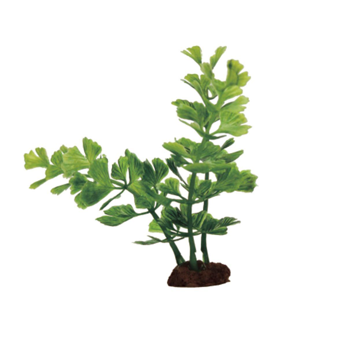 Растение для аквариума ArtUniq Кариота, высота 10 см, 6 штART-1170533Растение для аквариума ArtUniq Кариота, высота 10 см, 6 шт