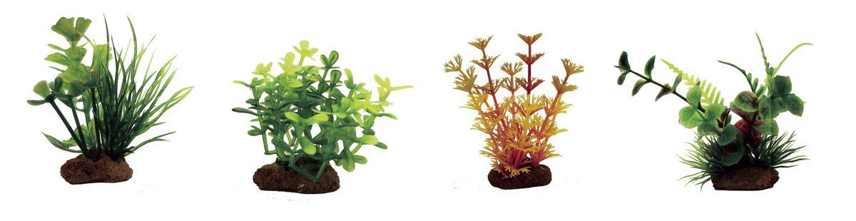 Растение для аквариума ArtUniq Марсилия, глоссостигма, амбулия оранжевая, лизимахия, высота 7-10 см, 4 штART-1170601Растение для аквариума ArtUniq Марсилия, глоссостигма, амбулия оранжевая, лизимахия, высота 7-10 см, 4 шт