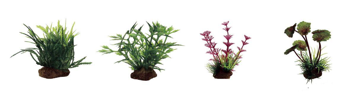 Растение для аквариума ArtUniq Мох, гигрофила синнема, амбулия розовая, щитолистник, высота 10 см, 4 штART-1170602Растение для аквариума ArtUniq Мох, гигрофила синнема, амбулия розовая, щитолистник, высота 10 см, 4 шт