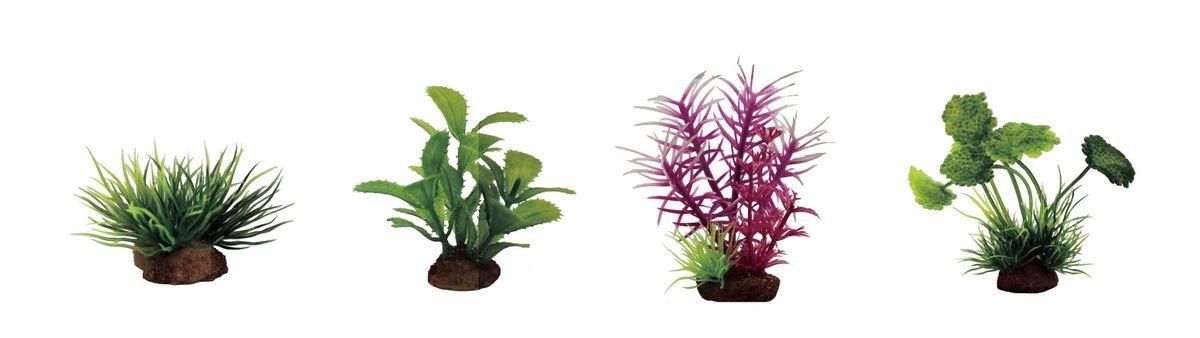 Растение для аквариума ArtUniq Лилеопсис, прозерпинака, погостемон розовый, щитолистник, высота 7-10 см, 4 штART-1170603Растение для аквариума ArtUniq Лилеопсис, прозерпинака, погостемон розовый, щитолистник, высота 7-10 см, 4 шт