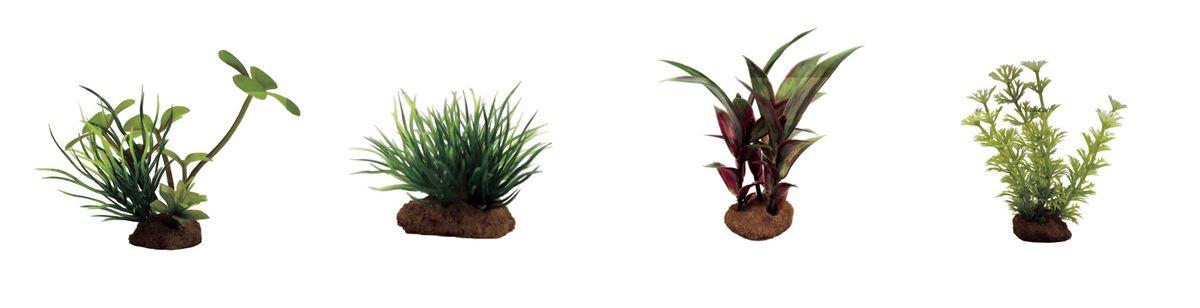 Растение для аквариума ArtUniq Марсилия, лилеопсис, альтернантера, амбулия, высота 7-10 см, 4 штART-1170604Растение для аквариума ArtUniq Марсилия, лилеопсис, альтернантера, амбулия, высота 7-10 см, 4 шт