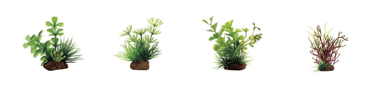 Растение для аквариума ArtUniq Прозерпинака, амбулия, кариота, блестянка, высота 7-10 см, 4 штART-1170606Растение для аквариума ArtUniq Прозерпинака, амбулия, кариота, блестянка, высота 7-10 см, 4 шт