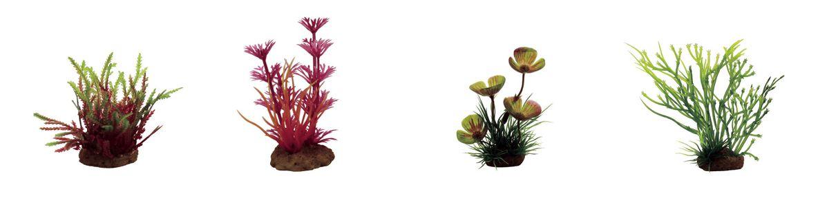 Растение для аквариума ArtUniq Мох, кабомба красная, марсилия, блестянка , высота 7-10 см, 4 штART-1170611Растение для аквариума ArtUniq Мох, кабомба красная, марсилия, блестянка , высота 7-10 см, 4 шт