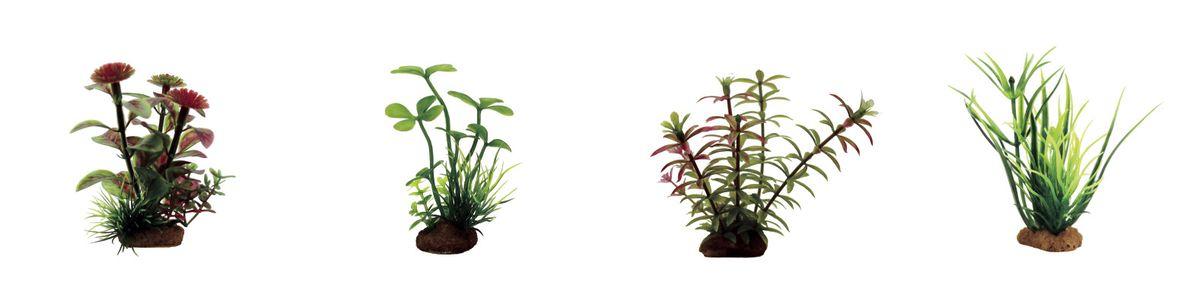 Растение для аквариума ArtUniq Гигрофила, марсилия, элодея, лагаросифон, высота 7-10 см, 4 штART-1170612Растение для аквариума ArtUniq Гигрофила, марсилия, элодея, лагаросифон, высота 7-10 см, 4 шт