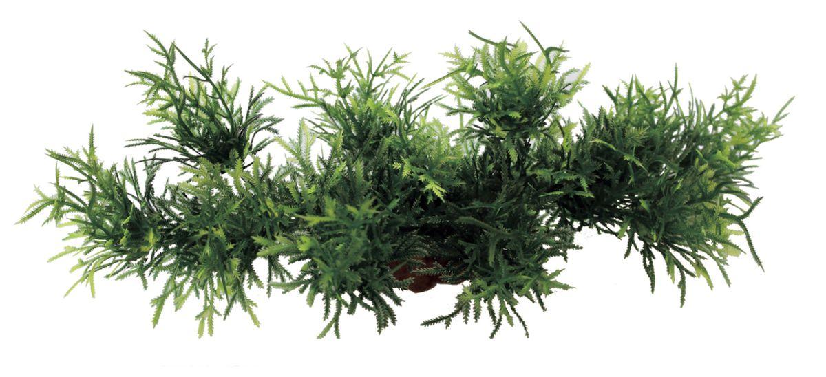 Композиция из растений для аквариума ArtUniq Мох ключевой, 24 х 8 х 9 смART-1180103Композиция из растений для аквариума ArtUniq Мох ключевой, 24 х 8 х 9 см