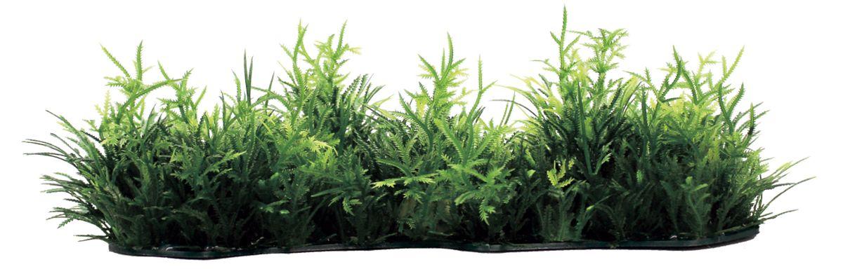 Композиция из растений для аквариума ArtUniq Коврик из мха, 23 x 8 x 4 смART-1180104Композиция из растений для аквариума ArtUniq Коврик из мха, 23 x 8 x 4 см